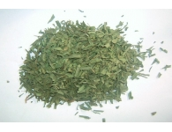 Tarragon Leaves